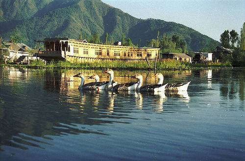 Golden Triangle Tour with Srinagar & Mumbai