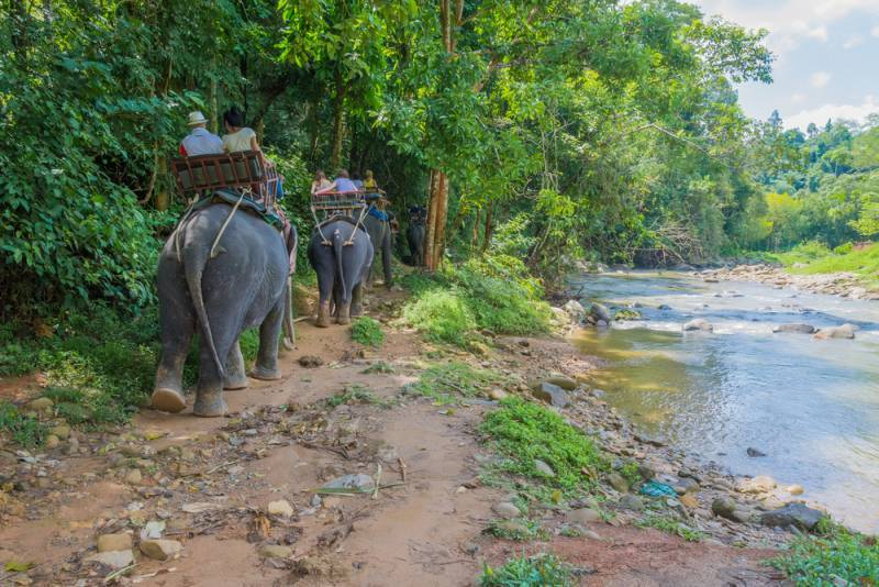 BACKWATERS & WILDLIFE TOUR PACKAGES
