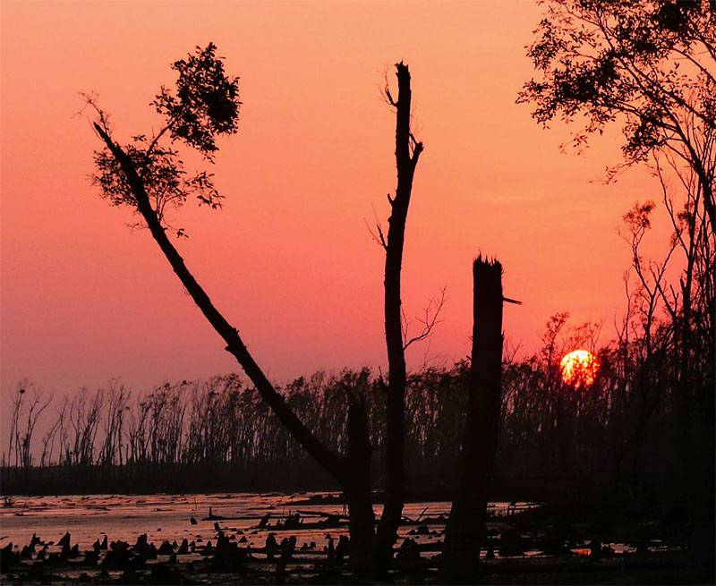 Sunderbans and Bagerhat