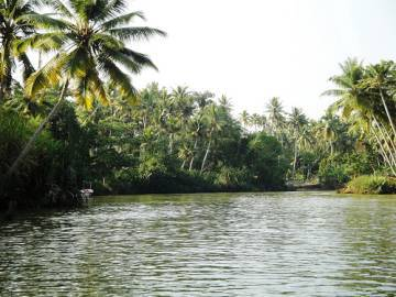 Wildlife of Kerala