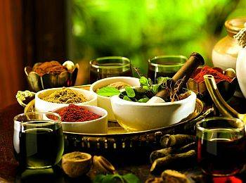 Kerala Spices & Ayurveda Tour Package