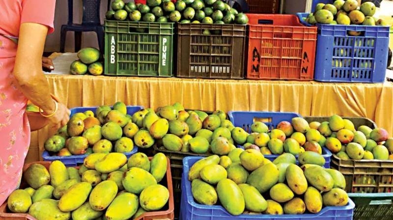 Mango Mela Bangalore