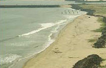A Bird's Eye View of Pondicherry Beach