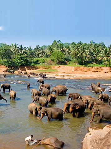 Maharashtra Mumbai bollywood City tour - Special holidays